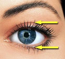 eye_arrows_sm